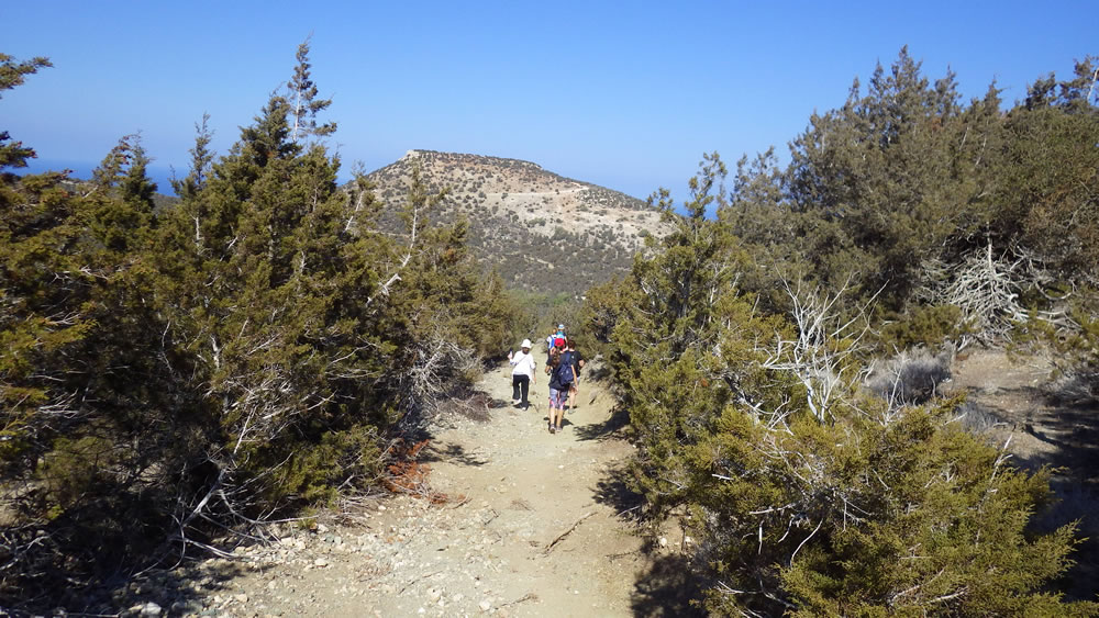 Guided walking at Adonis Trail