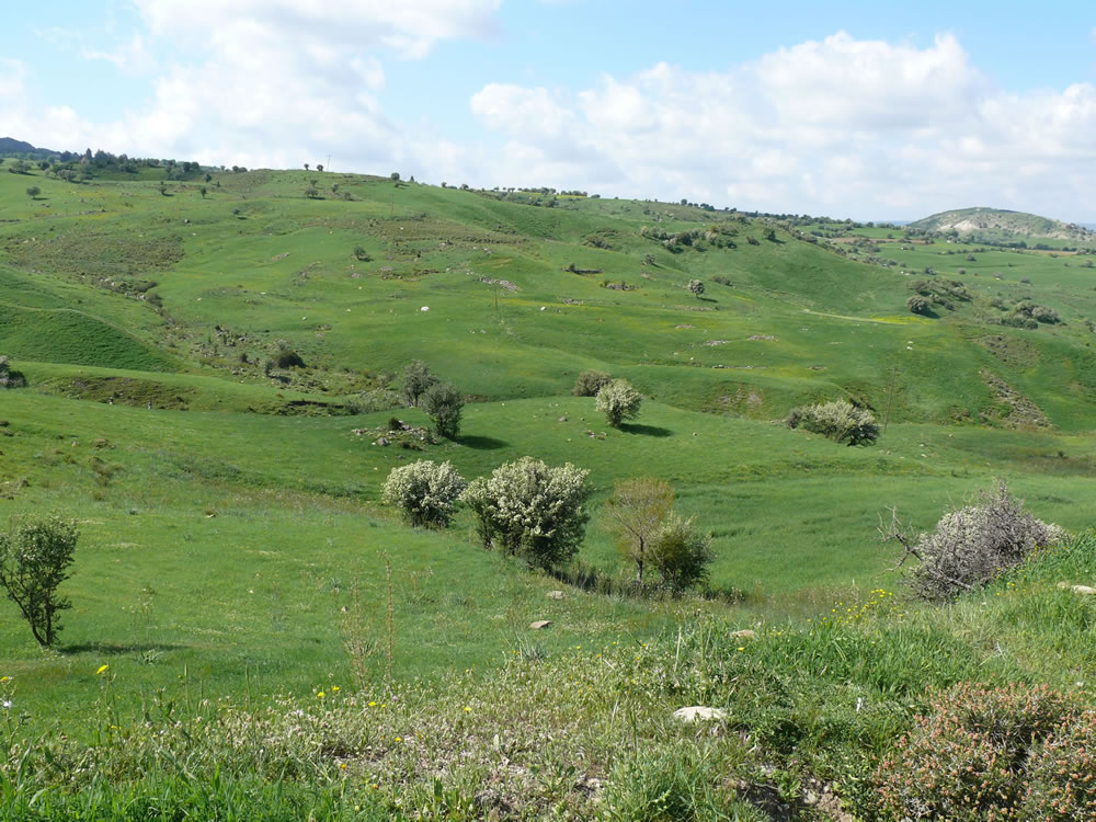 Ezousa_valley